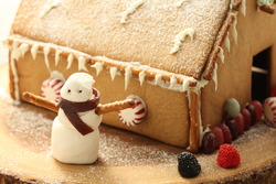 High altitude gingerbread house